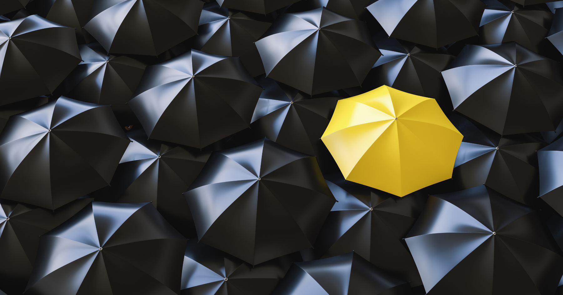 6 ways to make your business stand out from the crowd